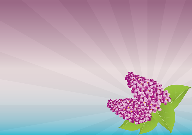 lilas, fleurs, pourpre