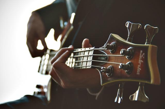 guitariste, guitare, jouer