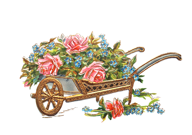 fleurs, brouette, or